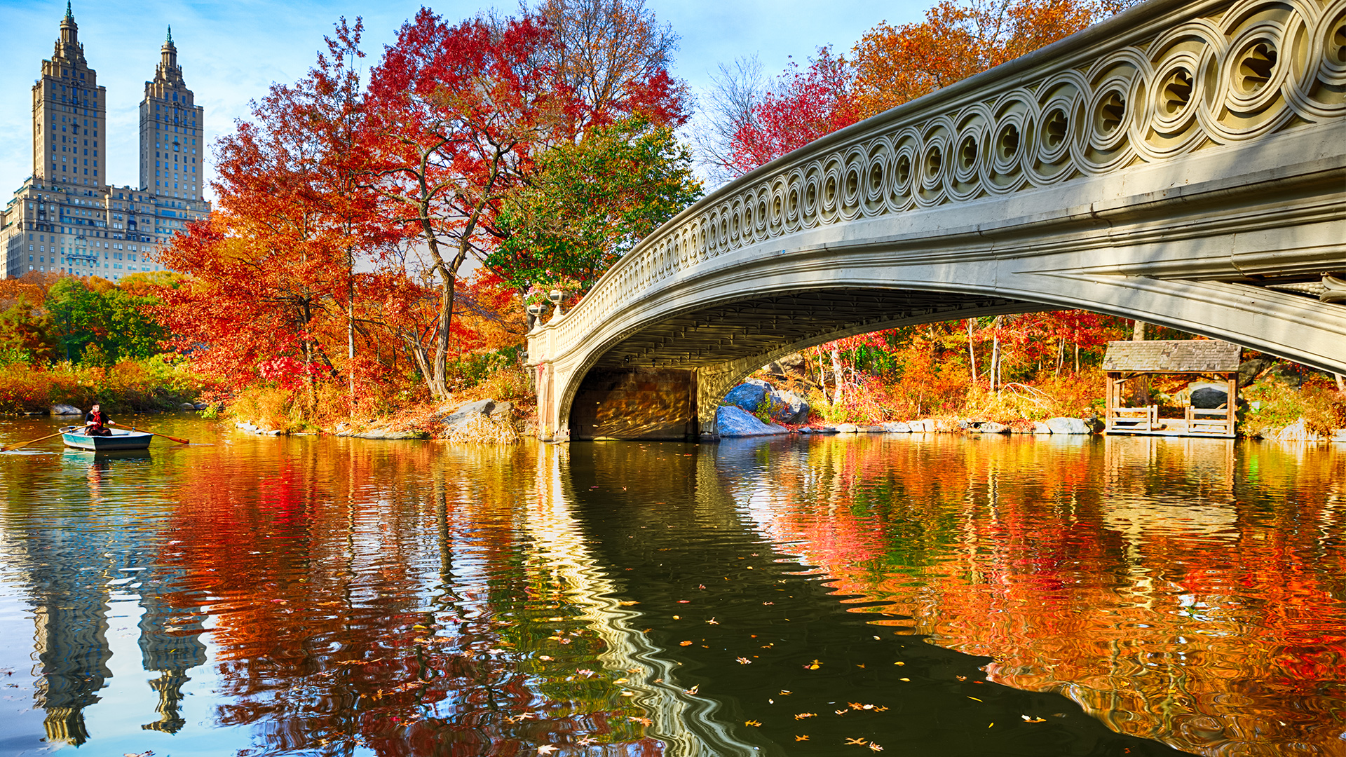Gorgeous fall colors in Central Park
